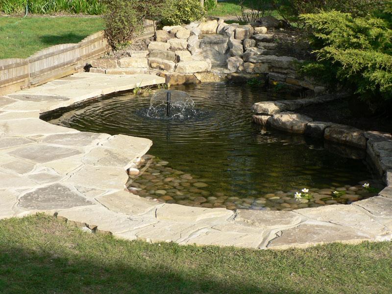 Pond restoration maintenance ross charman horsham for Ornamental pond fish uk